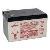 Enersys NP12-12T