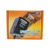 Smart Delta Peak Charger for NIMH/NICD 6-7  Cell 7.2v - 8.4v Battery Packs